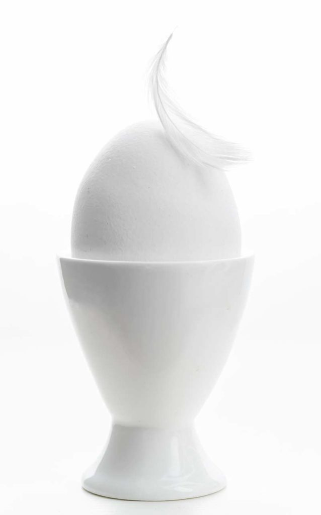Total white... the egg